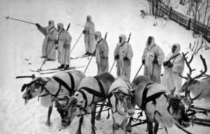 Finnish troops in Winter War with reindeer